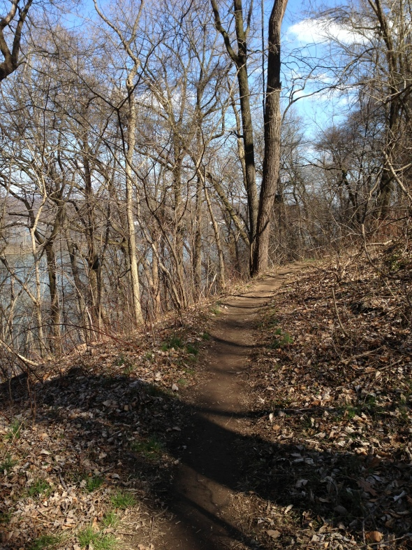Trail on the HAT Run - Susquehanna State Park