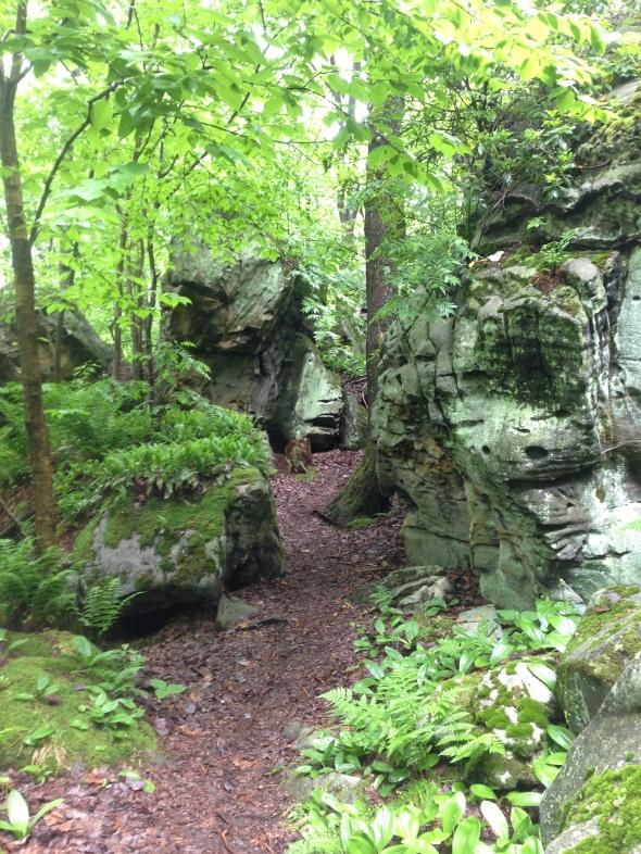 rock mazes