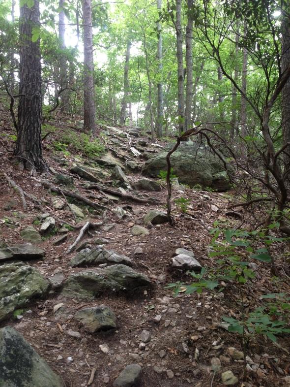 Lots of rocks...lots of climbing
