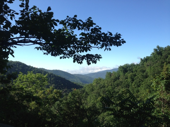 View from the climb up White Oak Canyon