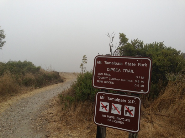A foggy morning on the Dipsea.