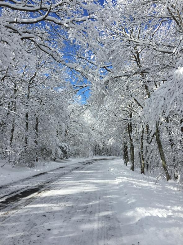 A snowy Skyline Drive